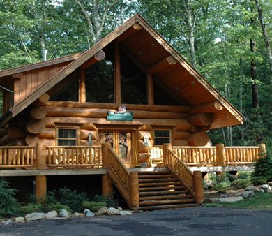 Facts about Custom Log Cabins and Log Homes